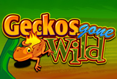Geckos Gone Wild